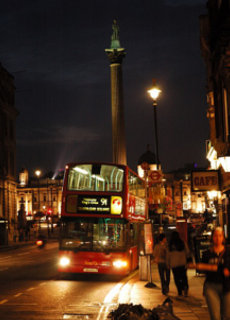 Nigth Bus, 2014
